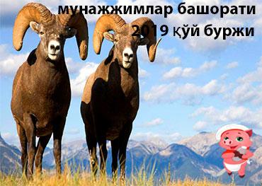 мунажжимлар башорати 2019 қўй буржи