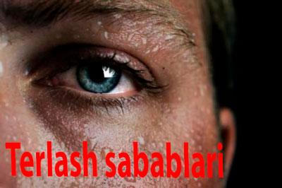Terlash sabablari — TO'P 4