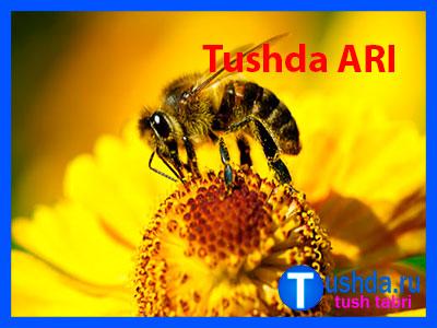 Tushda ARI ko'rsa
