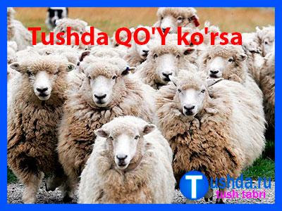 Tushda QO'Y ko'rsa