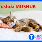 Tushda MUSHUK