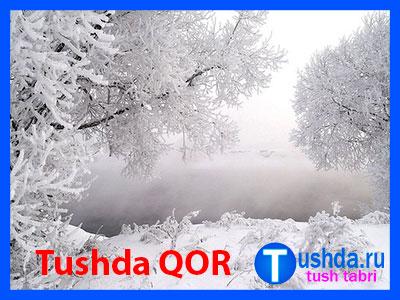 Tushda QOR
