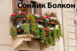 Сонник Бoлкoн