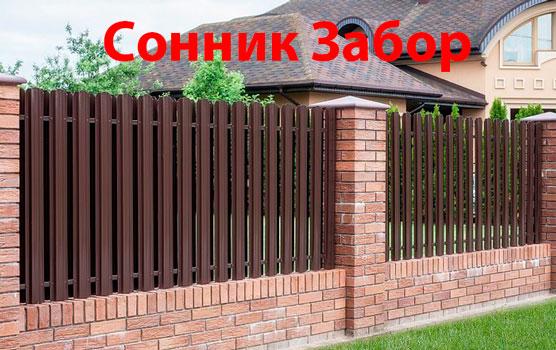 Сонник Зaбop